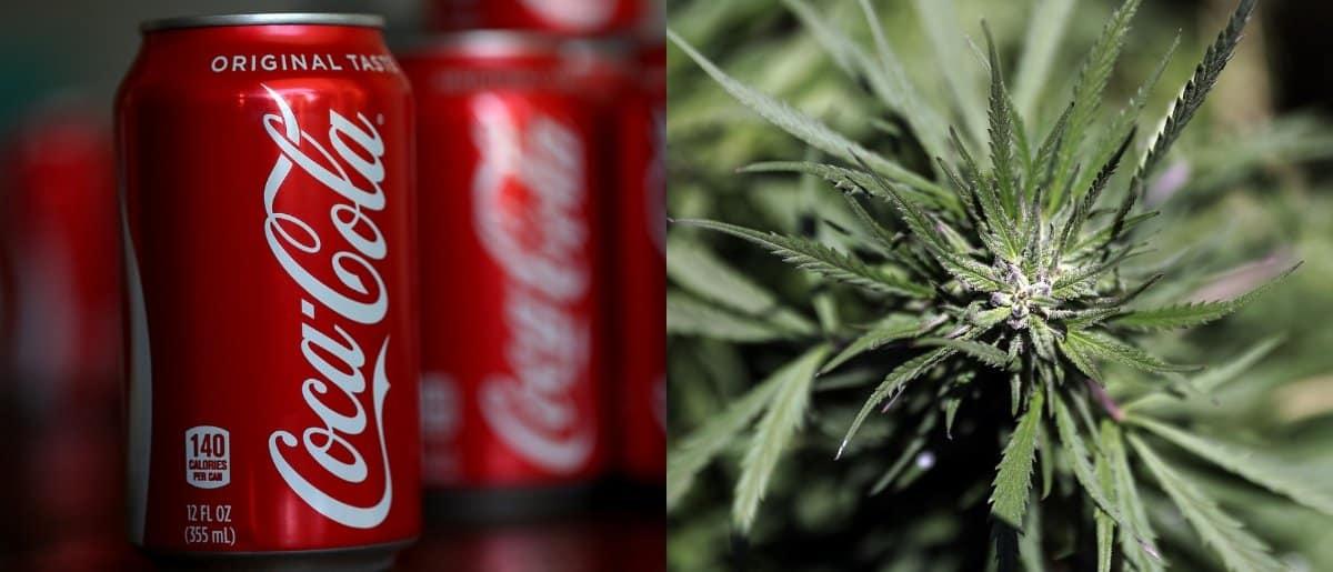 coca-cola-cannabis