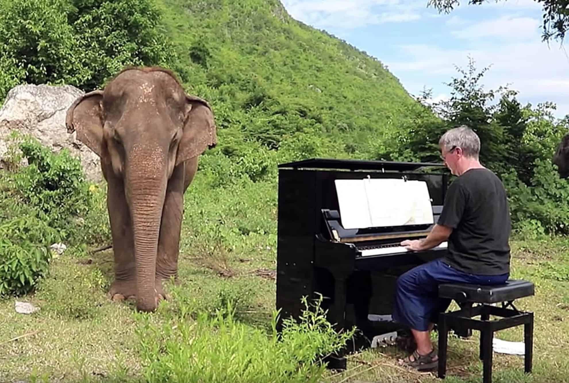 pianista-jubilado