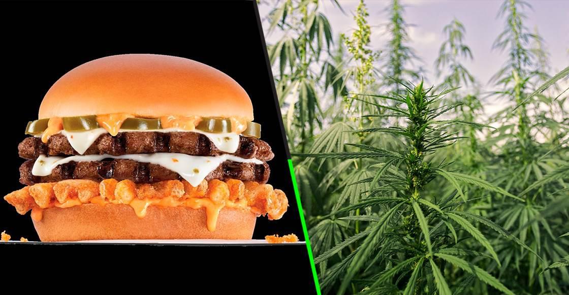 hamburguesa-cannabis