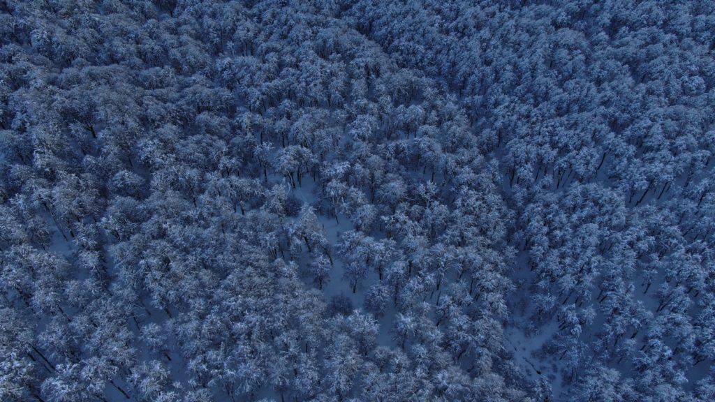 Imagen Cerro Chapelco Intriper 4