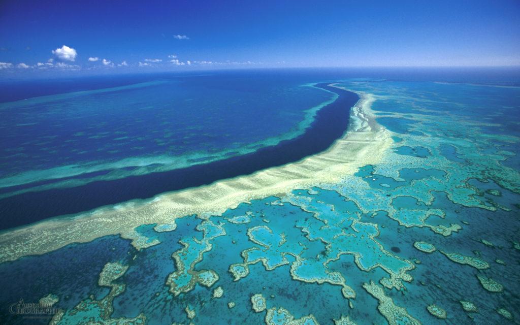 top 9 lugares que debes visitar en la Costa Este de Australia