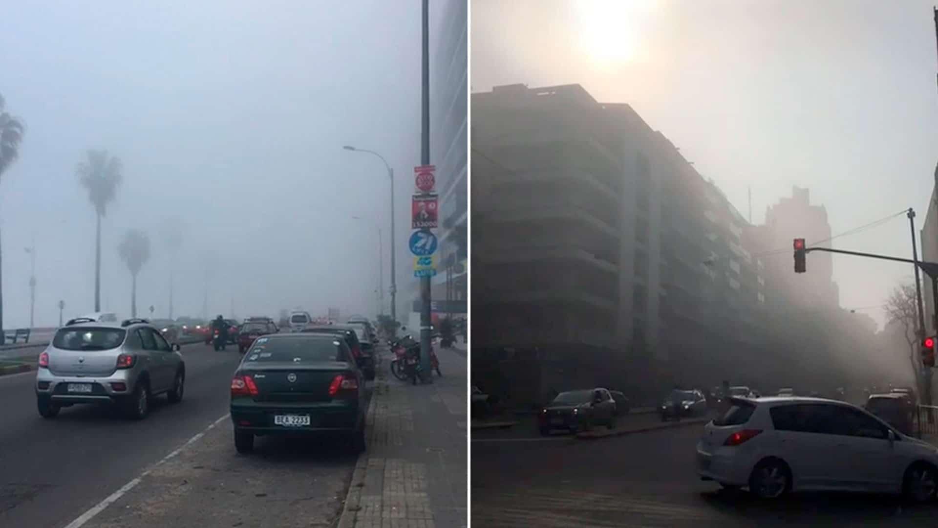 humo-uruguay-2