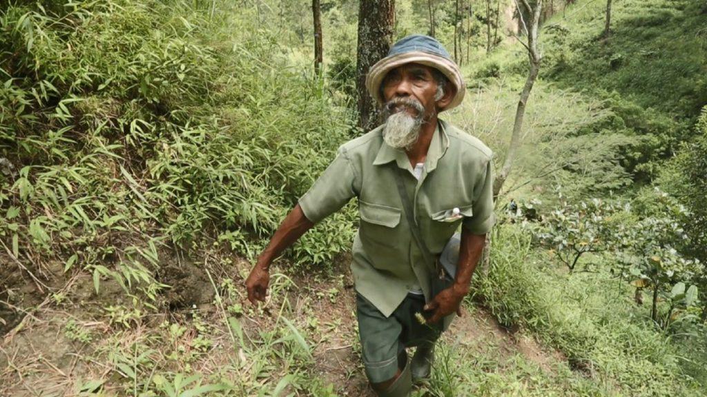 Sadiman, el hombre que plantó más de 11.000 árboles y logró revertir los estragos de la sequía en Indonesia
