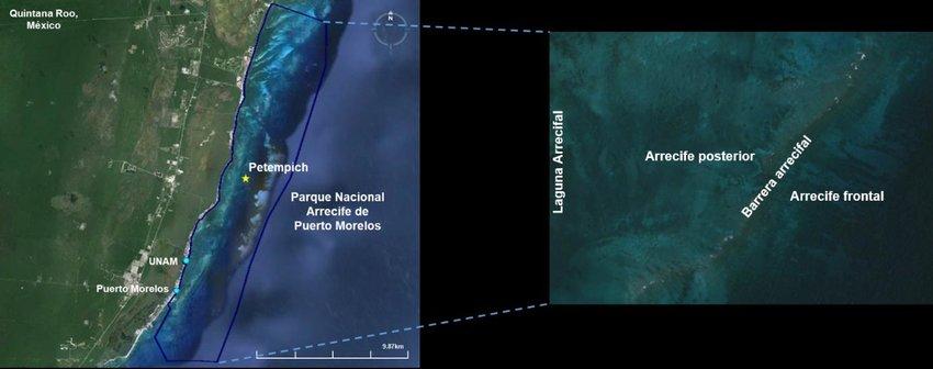 imagen Figura 3 Izq Parque Nacional Arrecife de Puerto Morelos Quintana Roo Mexico Der