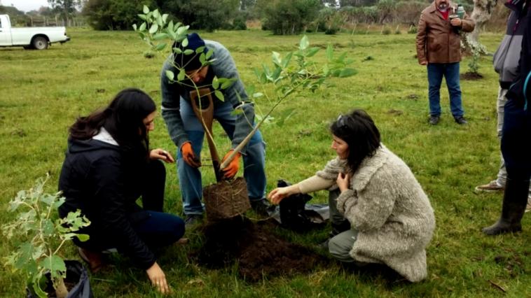 'Galápagos, esperanza para el futuro': El documental que muestra el trabajo por cuidar el medio ambiente