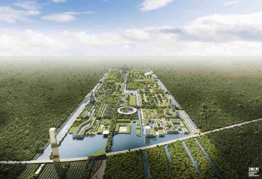 Los bosques están perdiendo su capacidad de absorber carbono