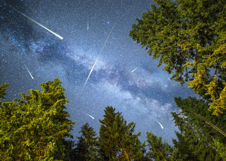 imagen meteor shower above the forest 1200x853 1