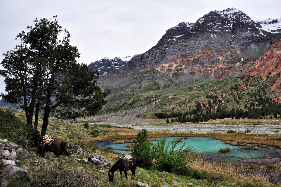 """Chile: Conoce la """"Ruta del Tricahue"""", la primera ruta de ecoturismo inclusivo del país"""