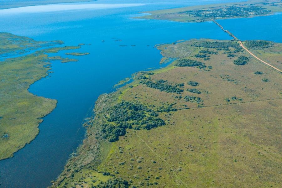 Esteros del Iberá en imágenes: humedales poco conocidos en Argentina pero distinguidos en el mundo