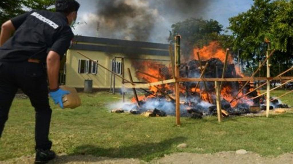 Indonesia: Pidieron la quema de más de 3.000 kilos de marihuana y terminaron drogando a todo un pueblo