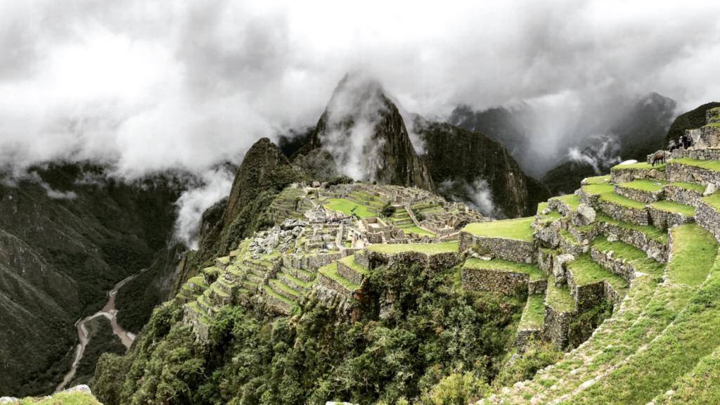 Machu Picchu será reforestado: anunciaron un millón de árboles nuevos para proteger el principal destino turístico de Perú