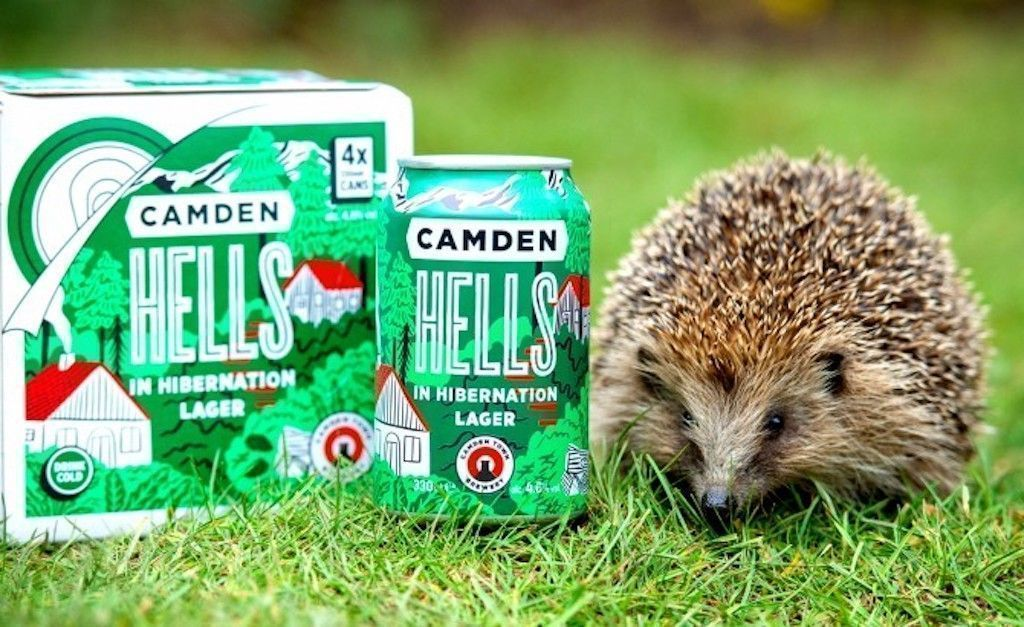 imagen Hedgehog next to beer