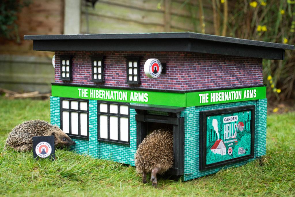 imagen hedgehog pubs FT BLOG0220 2