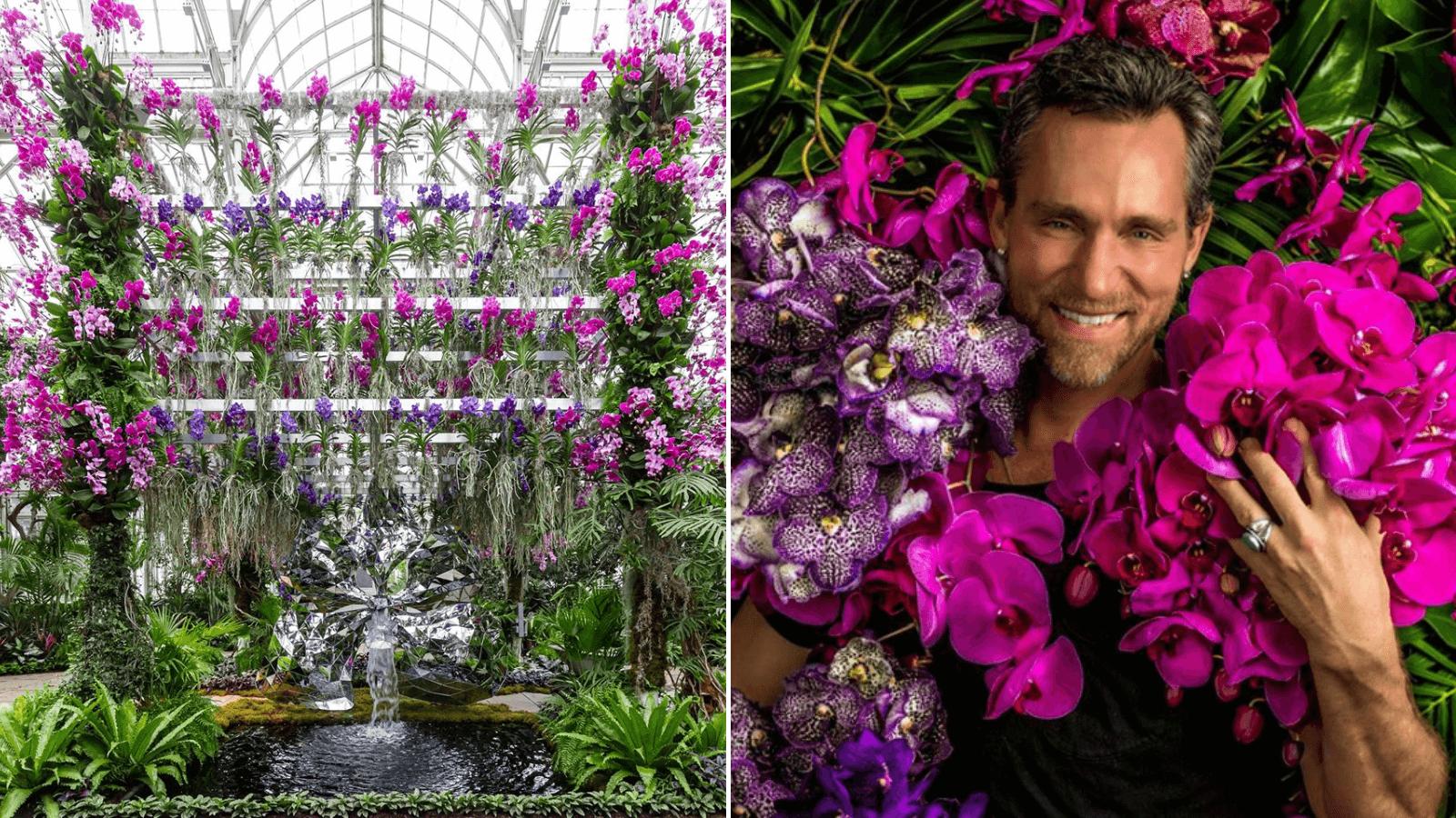 Jardín Botánico de Nueva York presenta su exhibición anual de orquídeas