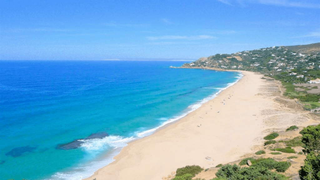 imagen Pol%C3%A9mica en Espa%C3%B1a ante la fumigaci%C3%B3n de playas con lavandina altamente perjudicial para la flora y fauna 7