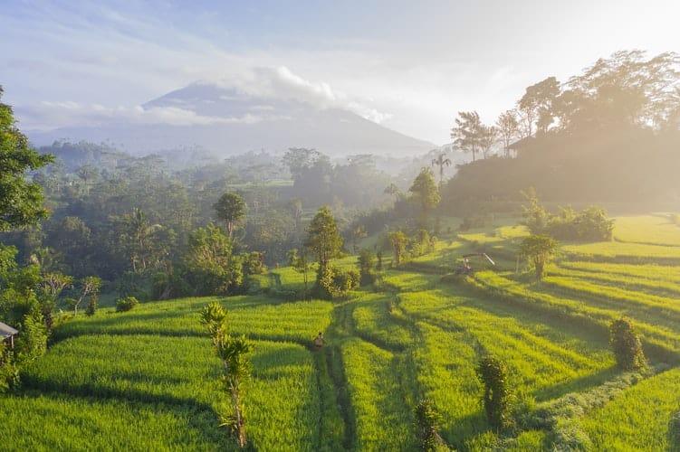 Bali anunció que reabrirá sus puertas al turismo internacional en septiembre
