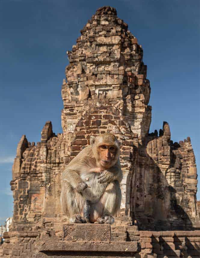 bangkok Lopburi