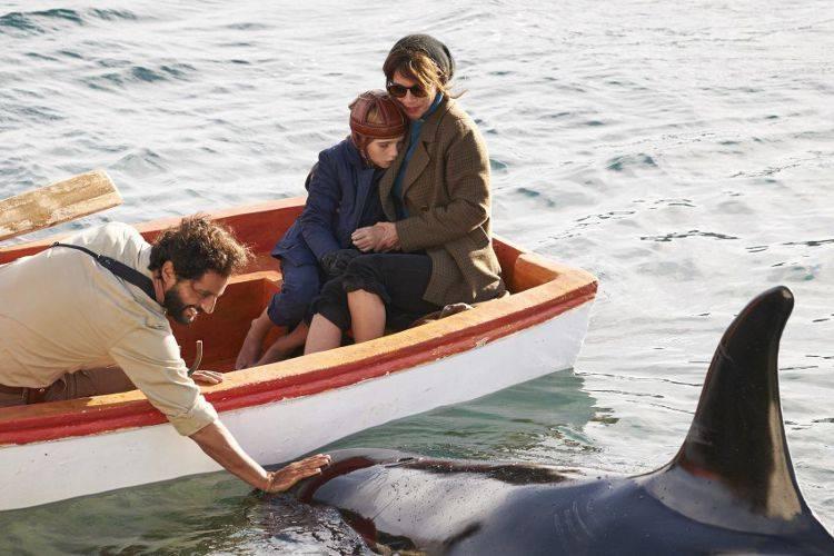 Orcas Salvajes