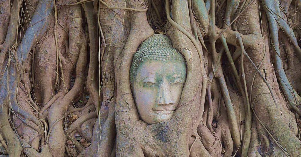Ayutthaya bangkok ayutthaya 2