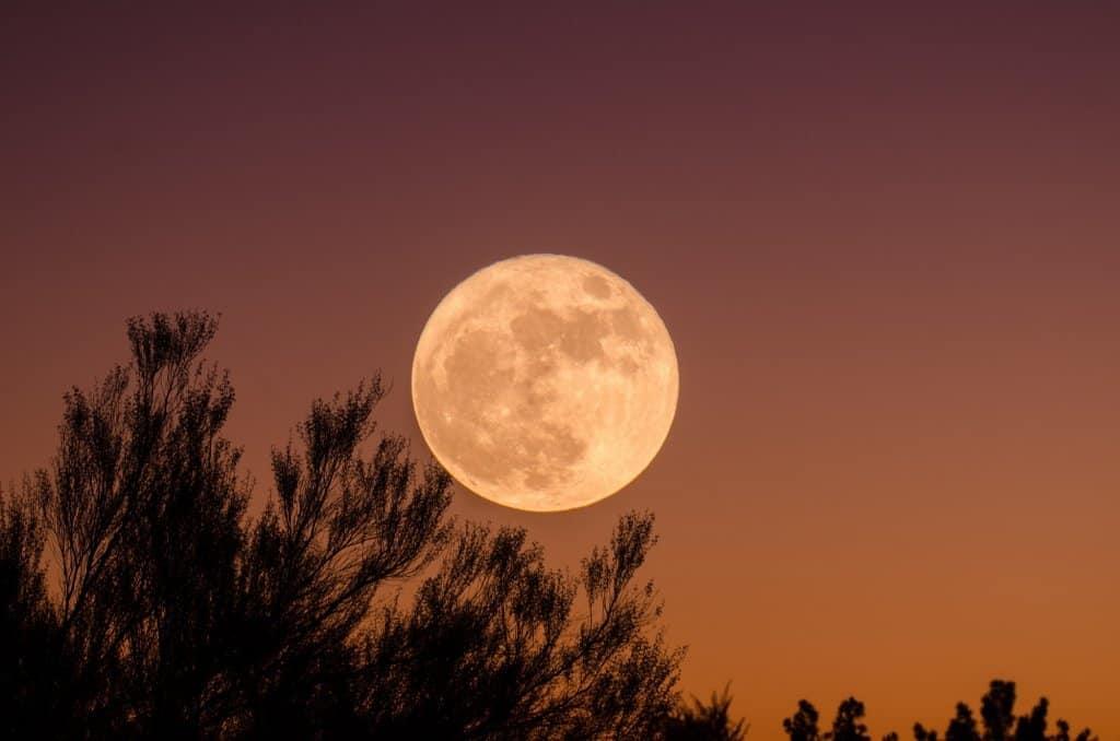 imagen Súperluna rosa Luna 1