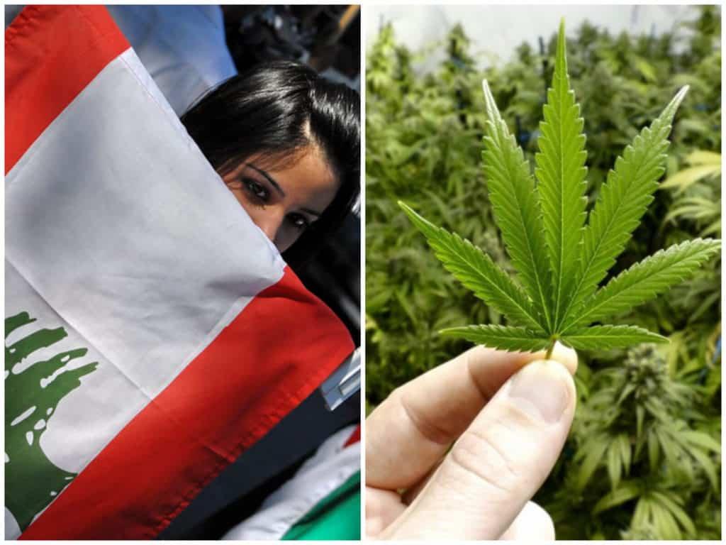 Líbano se convierte en el primer país árabe en legalizar la marihuana medicinal