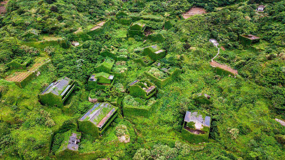 Houtouwan: el pueblo fantasma que fue devorado por la naturaleza
