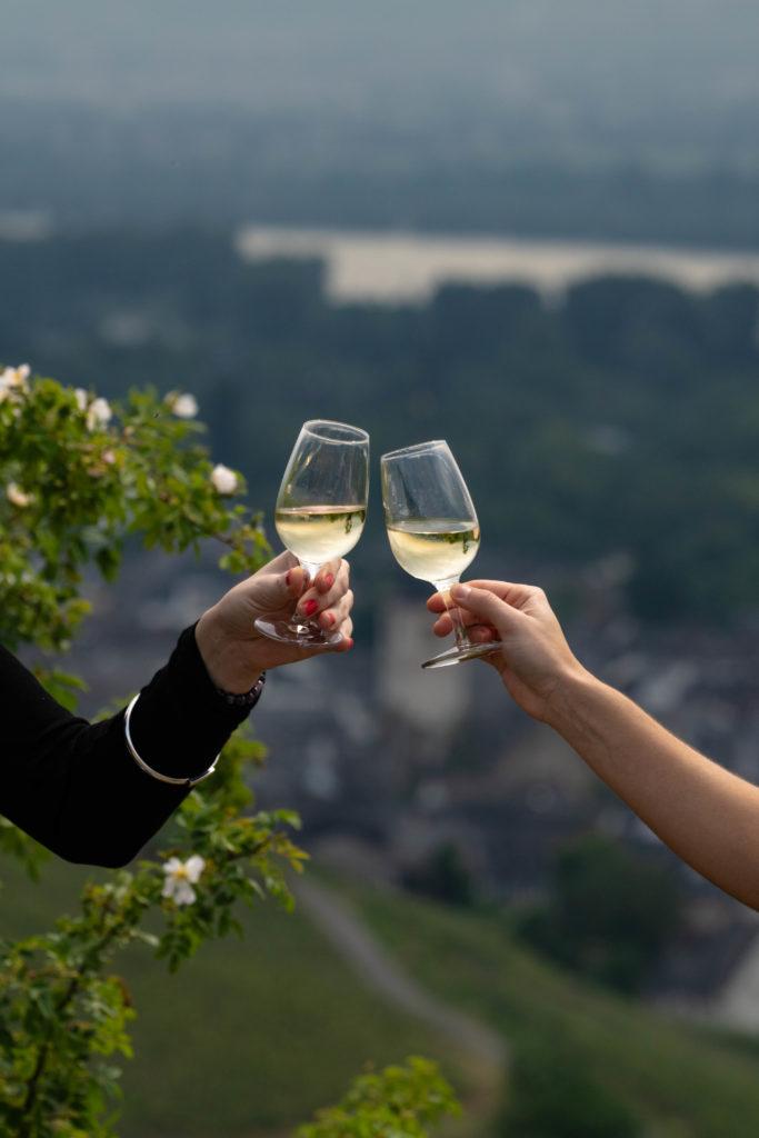 Imagen Intriper Rudesheim Am Rhein Vineyards 15