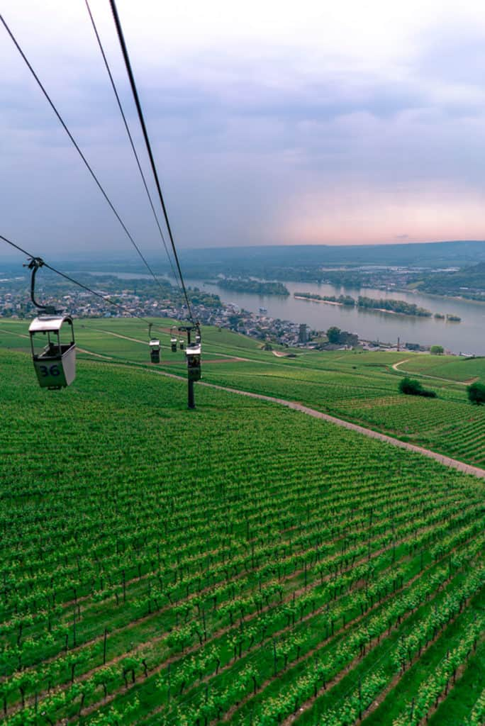 imagen R%C3%BCdesheim am Rhein