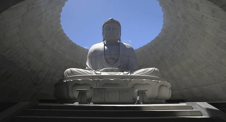 Conoce este Buda gigante rodeado por 150,000 plantas de lavanda
