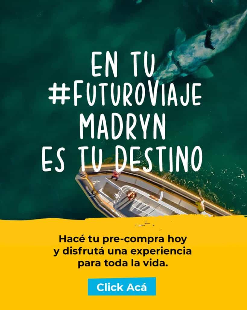 Llegan a Puerto Madryn las primeras ballenas de la temporada y la ciudad espera por los turistas de cercan%C3%ADa 2