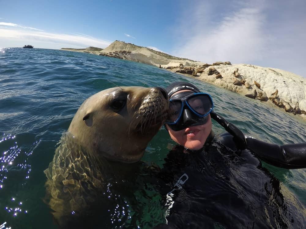 Llegan a Puerto Madryn las primeras ballenas de la temporada y la ciudad espera por los turistas de cercan%C3%ADa 3 1