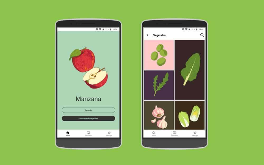 recetas y tips para consumir más vegetales