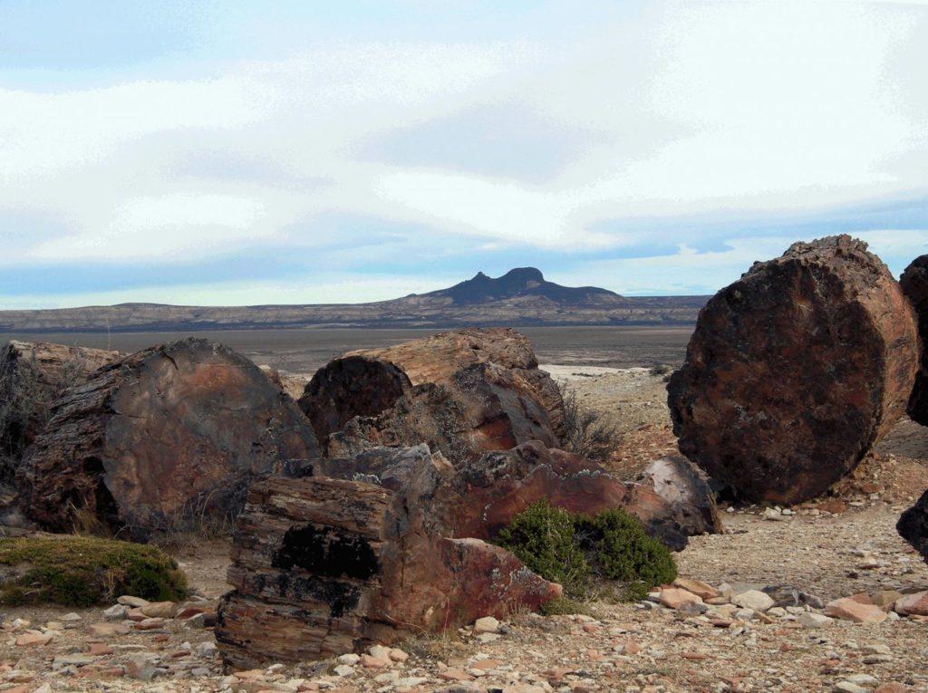 imagen Patagonia argentina Destinos y circuitos pocos conocidos de la Patagonia cu%C3%A1les son y d%C3%B3nde encontrarlos 8