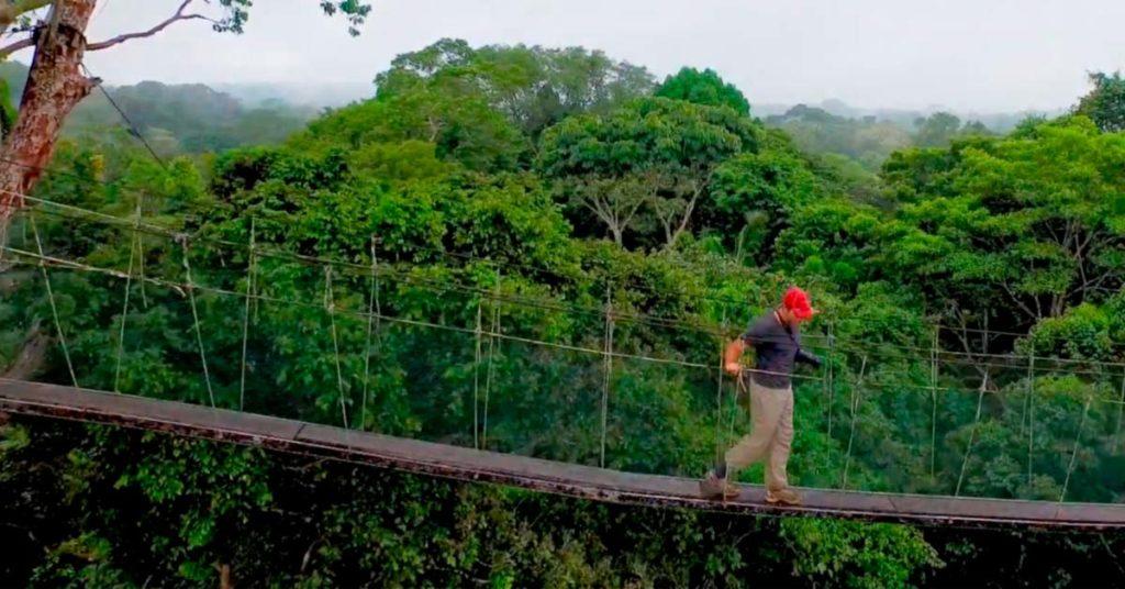 Caminatas en la selva amazónica peruana