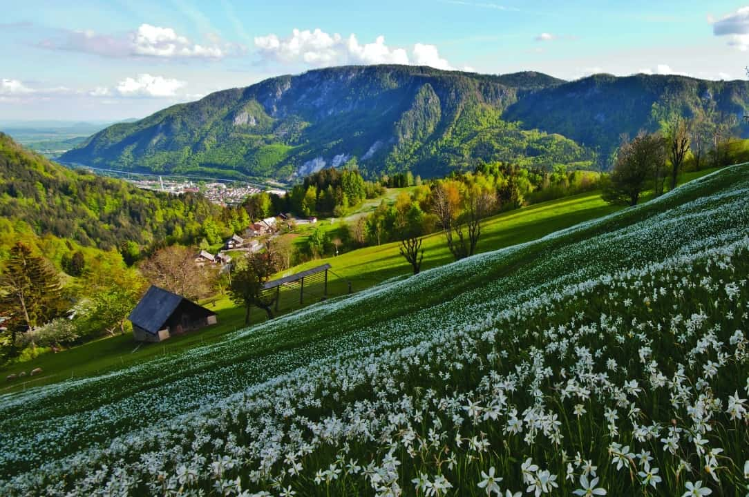 10 imágenes para enamorarse del nuevo sendero de los Alpes Julianos, en Eslovenia 8