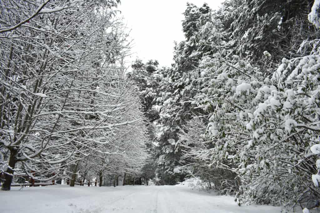 nevada bariloche