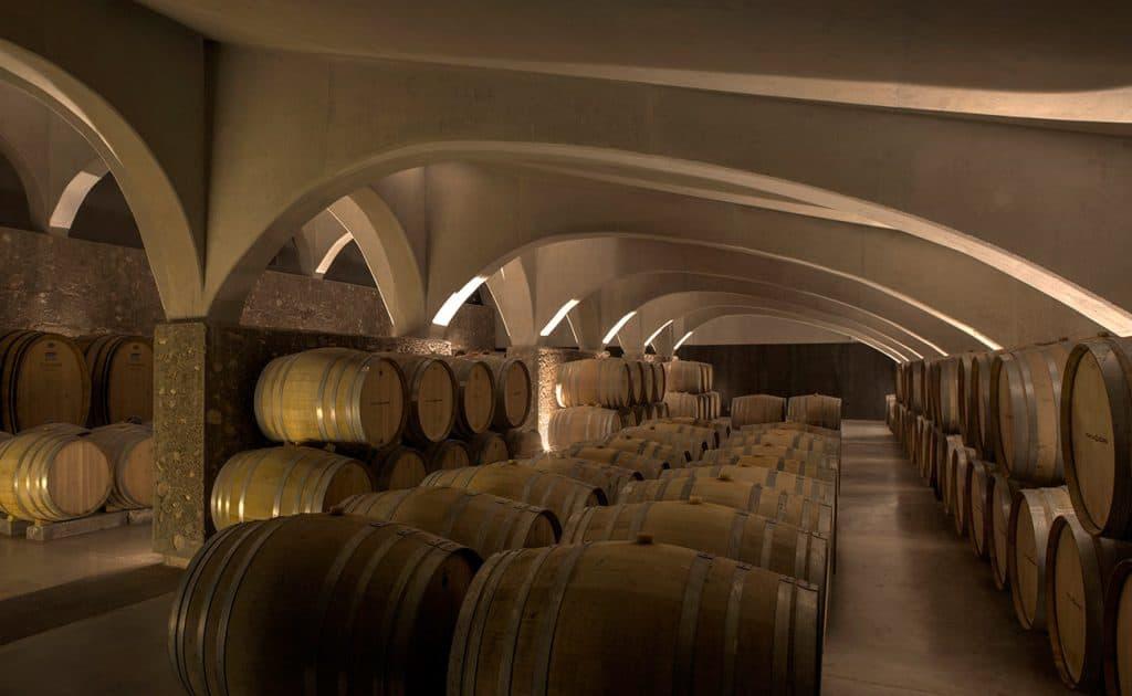 El mejor viñedo del mundo se encuentra en Argentina: dónde y cómo visitarlo
