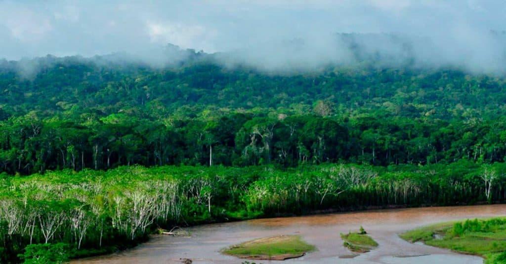 Parque Nacional Madidi madidi 2 1