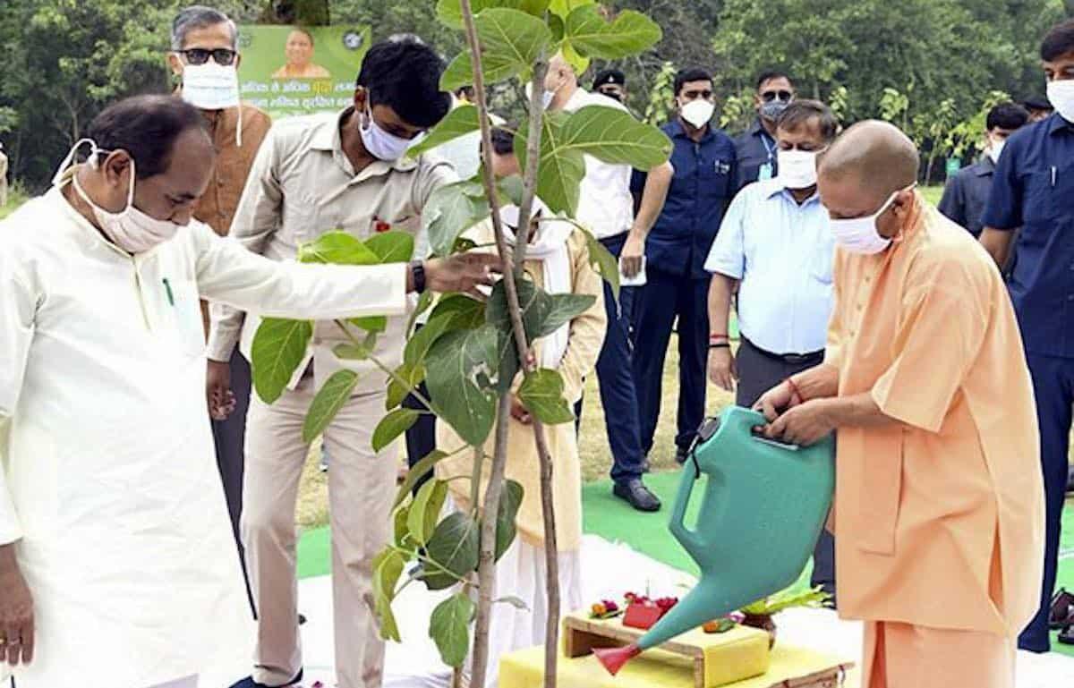 India-Uttar-Pradesh-state-government-released-Chief-Minister-Yogi-Adityanath-plants-tree