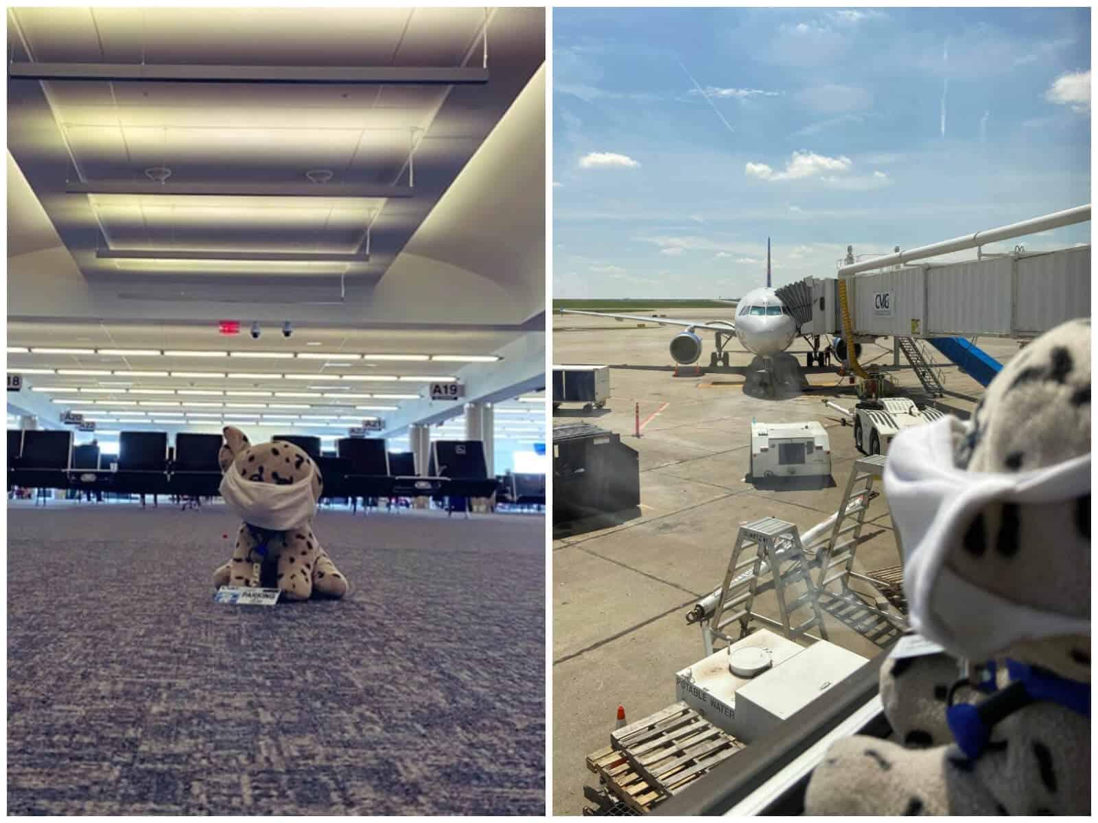 peluche-aeropuerto (1)