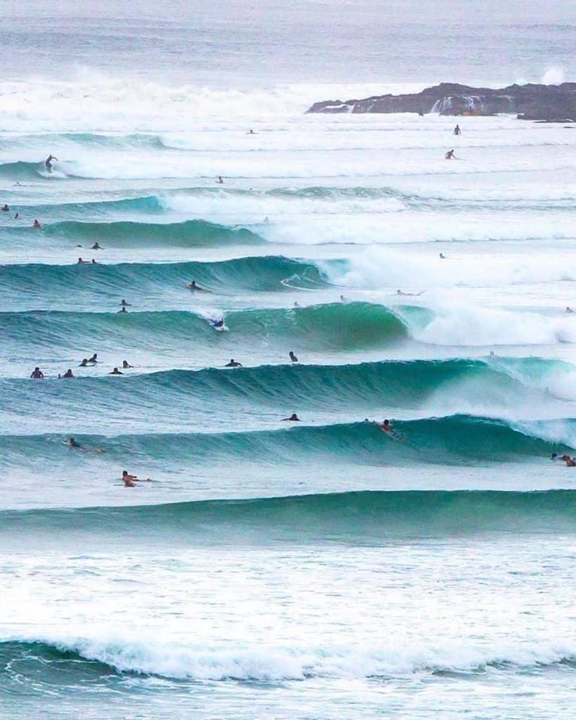 tiburones nadando dentro de una ola