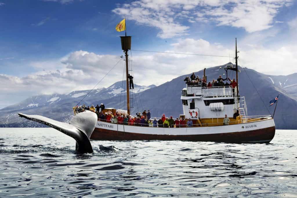 imagen Islandia islandia 1