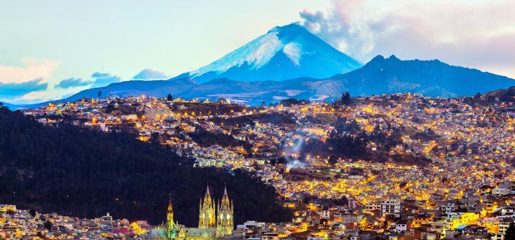 Camino de los Andes