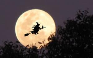 luna halloween