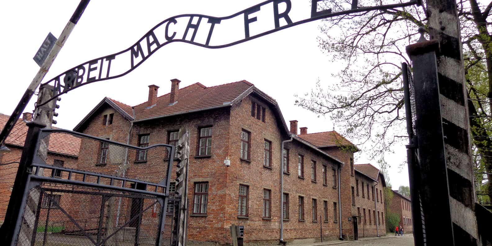 """Museo de Auschwitz sostiene que la nueva tendencia de TikTok puede ser """"hiriente y ofensiva"""""""