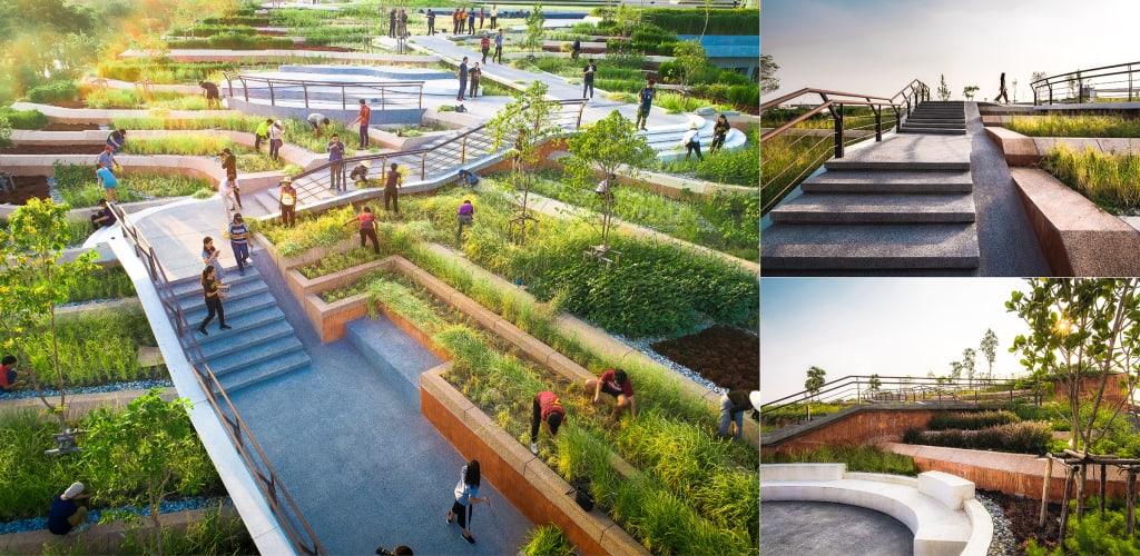 TURF: el proyecto que construye huertas orgánicas urbanas en el techo de la universidad