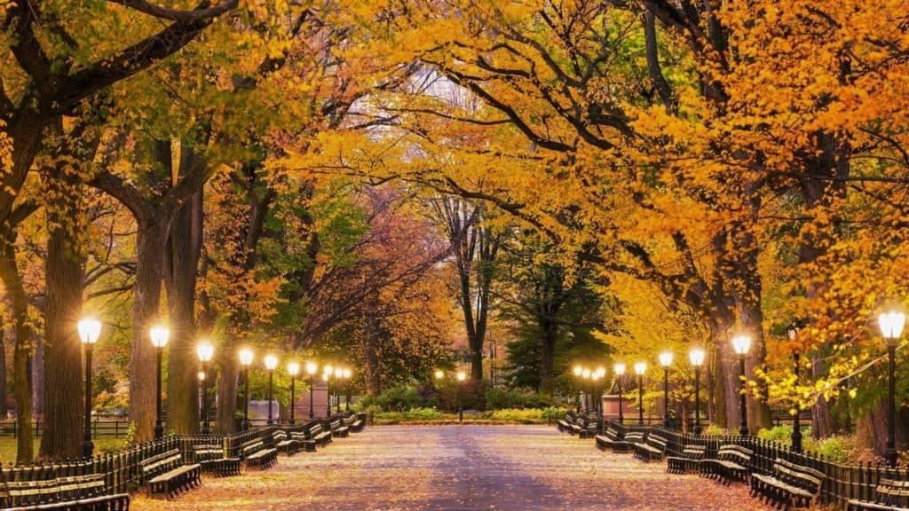 """La oficina de turismo de Nueva York busca voluntarios para encontrar los """"mejores colores del otoño"""" en la zona"""