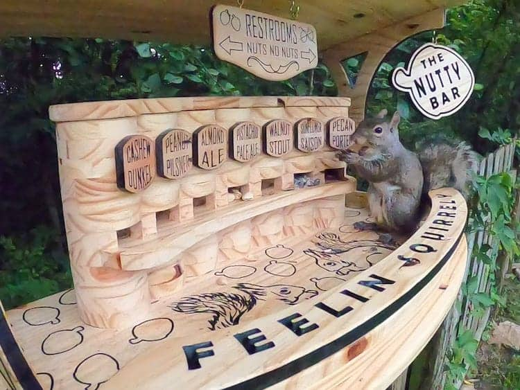 squirrel-bar-duke-harmon-woodworking-1