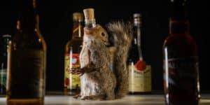 El Museo de Comida Repugnante, en Suecia, tiene una nueva exhibición de alcohol