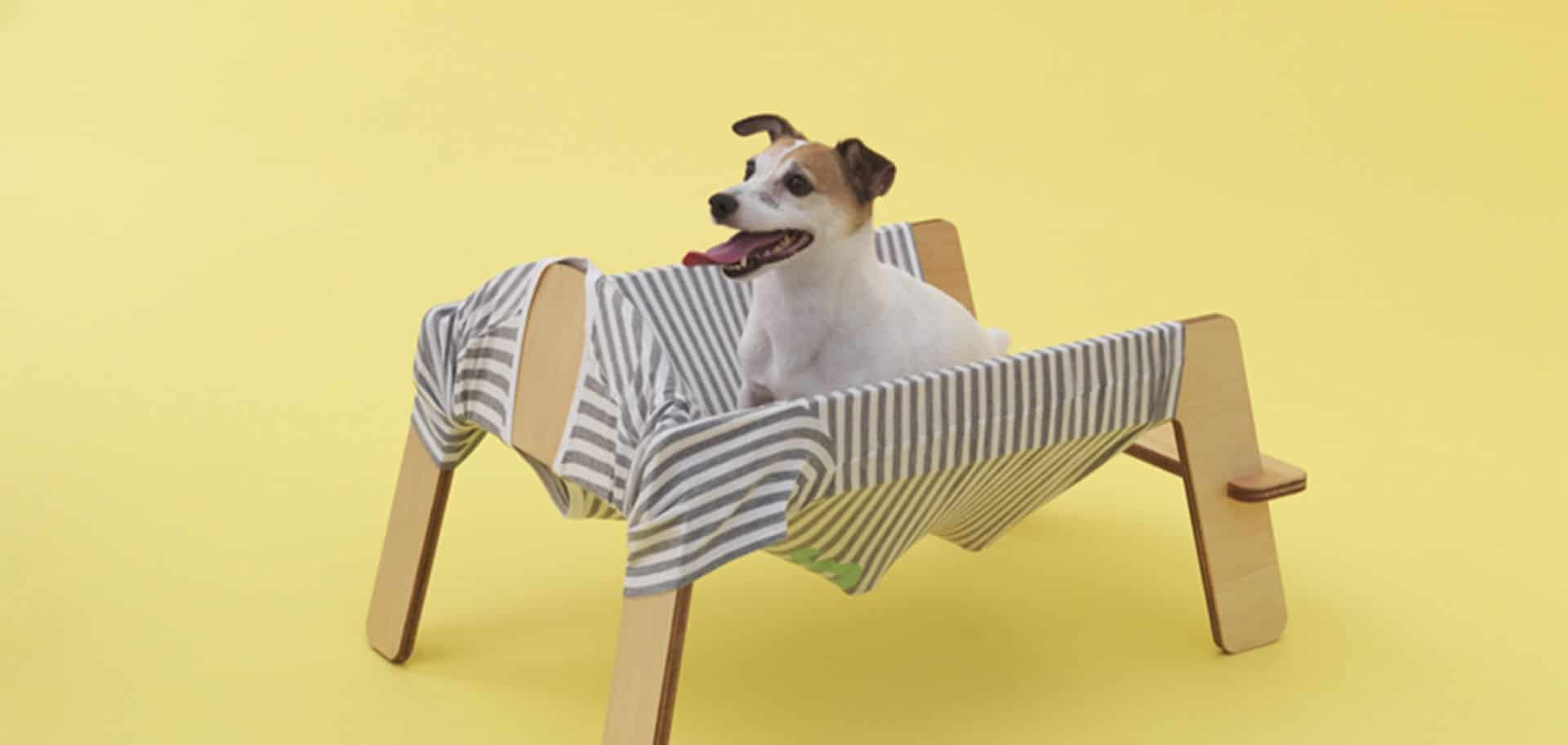 "Inauguró la muestra ""Arquitectura para perros"" en Japan House London, Inglaterra"
